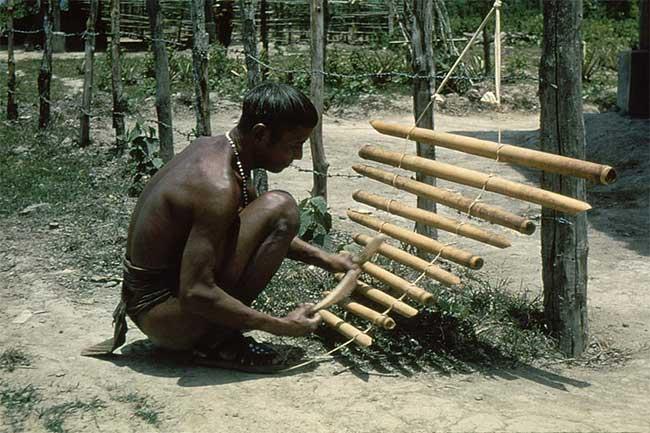 Người đàn ông dân tộc thiểu số Tây Nguyên chơi đàn T'nưng.
