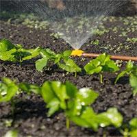 Nhật chế tạo thành công cảm biến độ ẩm có khả năng phân hủy sinh học