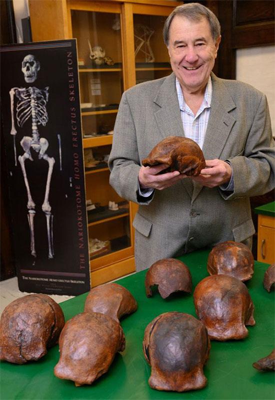 Giáo sư Russell Ciochon bên những hộp sọ của loài người cổ xưa này được tìm thấy tại Java