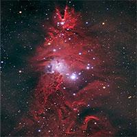 Tinh vân hình cây thông Noel trong chòm sao Kỳ Lân
