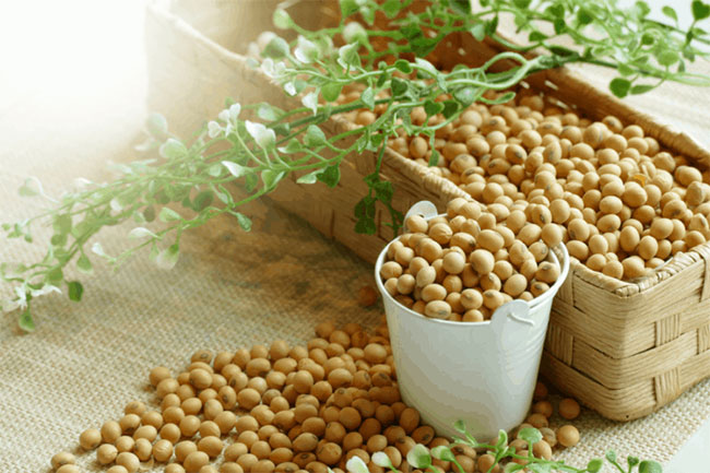 Đậu nành ngày càng trở thành thức ăn không thể không có trong chế độ ăn uống của người Mỹ.