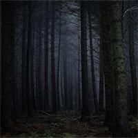"""Thuyết """"Khu rừng đen tối"""" và tại sao chúng ta vẫn chưa tìm thấy người ngoài hành tinh"""