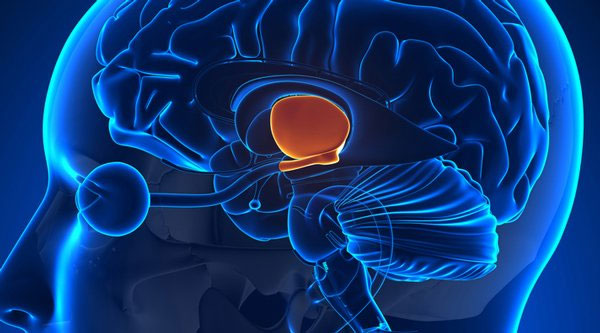 Tiến sĩ Don Moore cho rằng vùng dưới đồi trong não của Tarrare có vấn đề nên dẫn tới những cơn đói cực độ.
