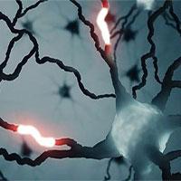 Phát hiện một loại tín hiệu chưa từng biết trong não người
