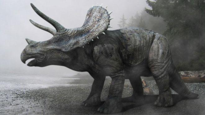 Hình 3D của loài khủng long 3 sừng Triceraptops được các nhà khoa học phục dựng lại.