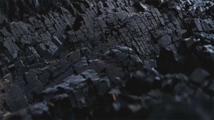 Than sinh học được sản xuất từ hỗn hợp vỏ mía và mùn cưa.