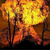 Thứ gì có thể ăn được sau thảm họa chiến tranh hạt nhân?