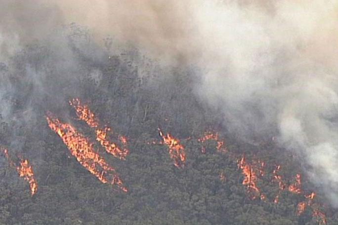 Các đám cháy ở New South Wales thiêu rụi 5,2 triệu ha đất.