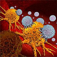 """Phát hiện cơ chế miễn dịch """"có thể điều trị mọi loại ung thư"""""""