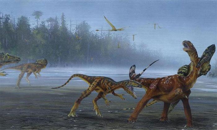 Một nhóm A. jimmadseni phối hợp săn một loài khủng long khác lớn hơn.
