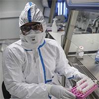 Thời gian ủ bệnh của virus corona là 5,2 ngày