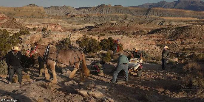 Một con ngựa thồ to khỏe đã được đưa đến để trợ giúp