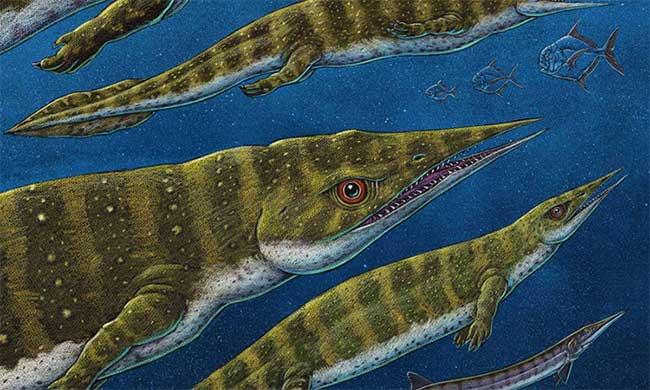 Hình ảnh phục dựng loài G. joseeae.