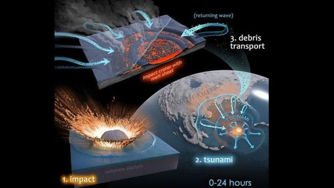Ảnh đồ họa mô tả cách sóng thần biến miệng hố va chạm thành chiếc tổ mới cho họ nhà vi khuẩn