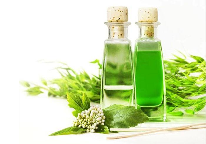 Tinh dầu tràm giúp điều trị viêm xoang rất tốt.