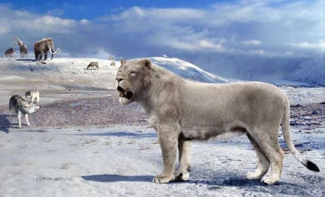 Yang's Tiger là một loài sư tử cổ đại bản địa của Trung Quốc.