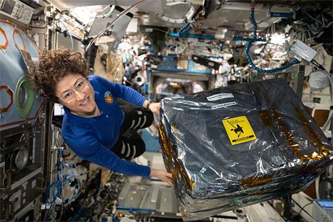 Christina Koch bên cạnh thiết bị khoa học được gửi lên từ Trái Đất