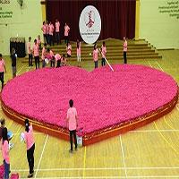 10 kỉ lục thú vị về ngày Valentine