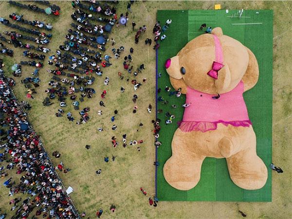 Gấu bông lớn nhất