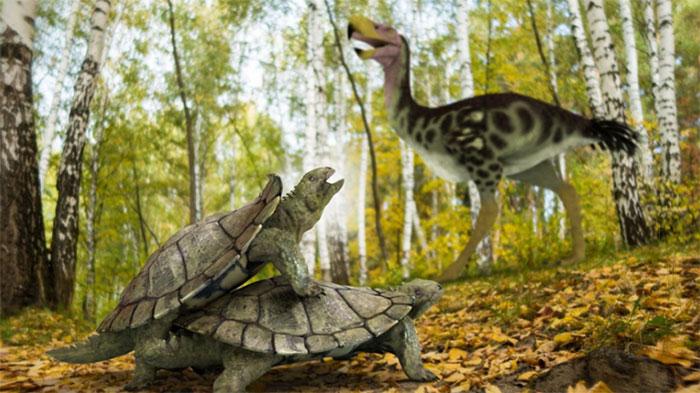 Hình ảnh loài rùa kỳ lạ được mô phỏng lại.