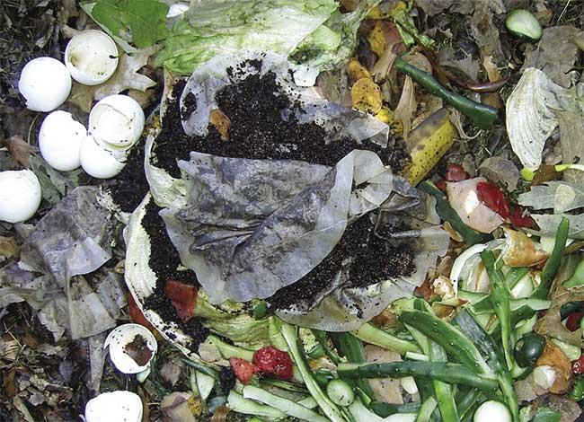 Sử dụng rác thải từ nhà bếp để làm phân hữu cơ.