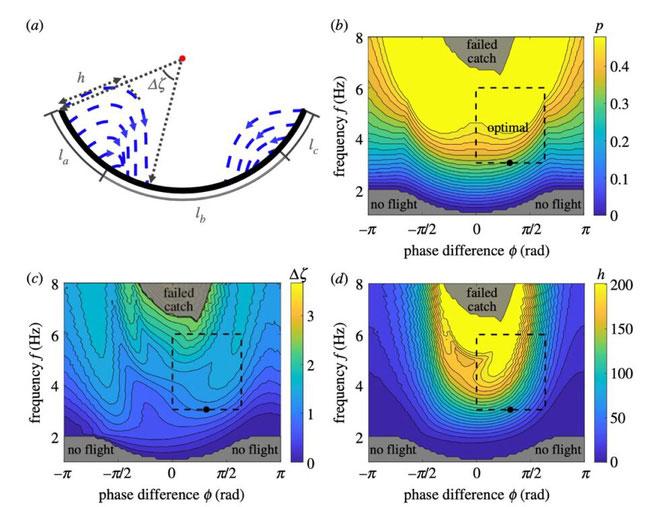 Mô hình chuyển động của chảo rang cơm