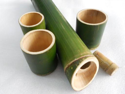 Tre, trúc là một trong số thực vật rỗng thân.