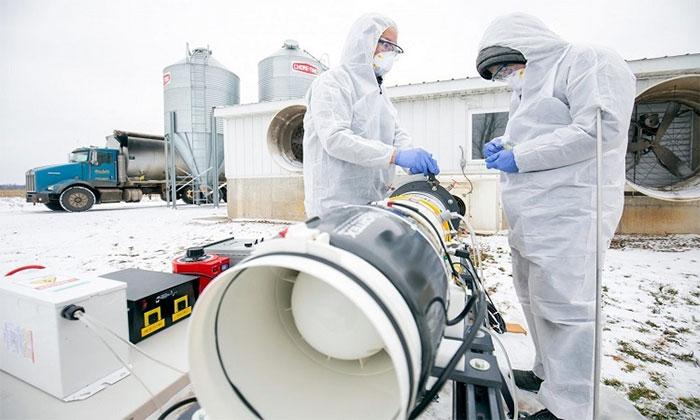 Các nhà nghiên cứu thử nghiệm nguyên mẫu lò plasma lạnh ở trang trại nuôi lợn tại Michigan