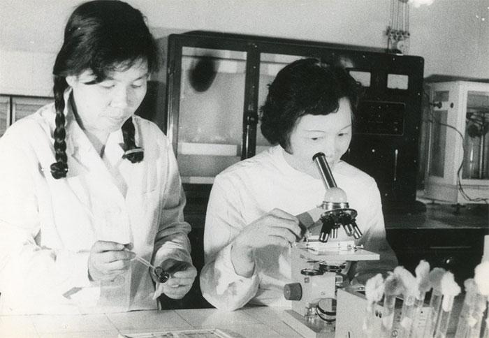 Kỹ thuật viên Vi Kim Ngọc (tóc ngắn) bên kính hiển vi năm 1967.