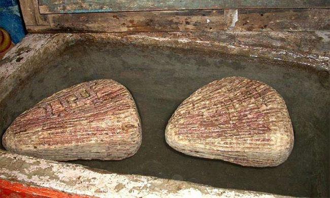 Nhìn chúng giống viên đá bình thường nhưng chúng lại nổi lên khi được đặt trong nước.