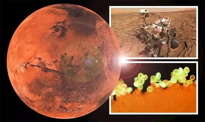 Sao Hỏa có nhiều dạng chất hữu cơ kỳ lạ, có loại tương đồng Trái đất