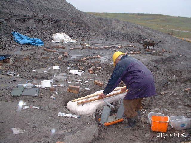 Các nhà nghiên cứu đang bảo vệ hóa thạch của cá Leeds.