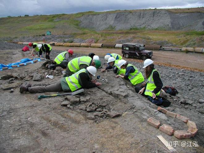 Nhân viên đang đào hóa thạch.