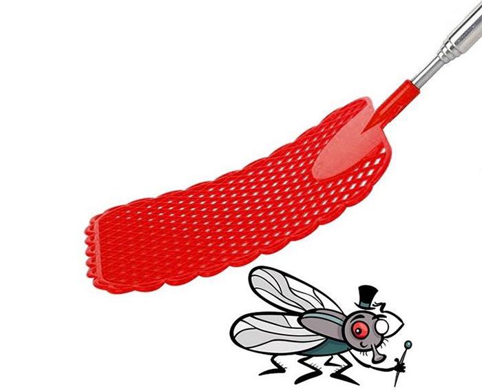 Các nhà nghiên cứu cuối cùng đã tìm ra bí mật thủ đoạn lẩn trốn của ruồi để tránh bị đập trúng.