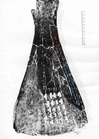 Chữ khắc trên xương của Trung Quốc cổ đại.