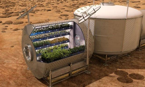 Khi tưới nước, thay vì trọng lực sẽ làm nước chảy xuống rễ thì nước lại bám lơ lửng vào lá hoặc nước không ngấm xuống đất.