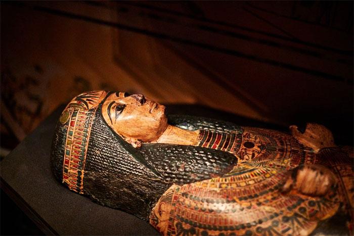 Ở Ai Cập cổ đại từng có bệnh sốt rét, bệnh lao và có thể cả bệnh đậu mùa và bệnh bại liệt.