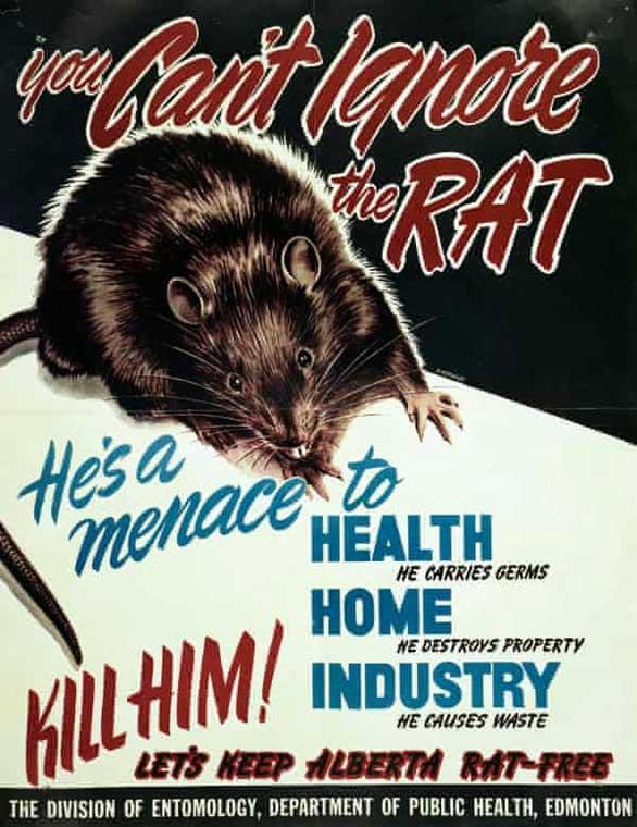 Poster kêu gọi diệt chuột những năm 1950 ở Alberta