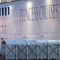 Virus corona tồn tại đến 17 ngày trên du thuyền Diamond Princess