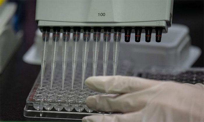 Các nhà nghiên cứu đang chạy đua tìm cách chế thuốc chữa và vắc xin phòng bệnh.