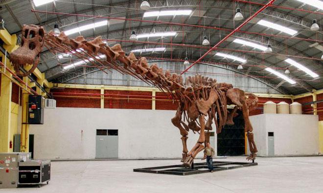 Bộ xương của khủng long Patagotitan.