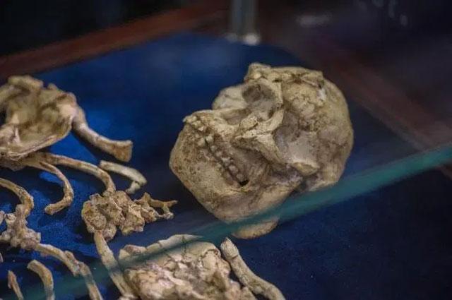 Người ta cho rằng Chân Nhỏ vốn là một phụ nữ 20 tuổi, bị chết do ngã.