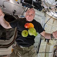 """Phi hành gia chia sẻ kinh nghiệm """"cách ly"""" trên vũ trụ"""