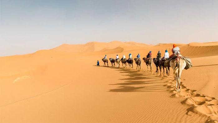 Sahara sở hữu địa hình đa dạng