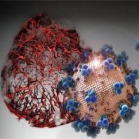 Phát hiện thuốc khiến nCoV nhân lên chậm hơn 1.000 lần