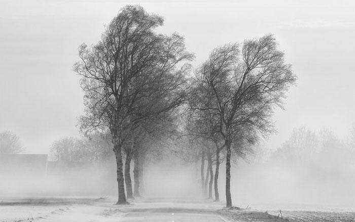 Gió mùa là loại gió thổi theo mùa (ở thời gian nhất định) trong một khu vực
