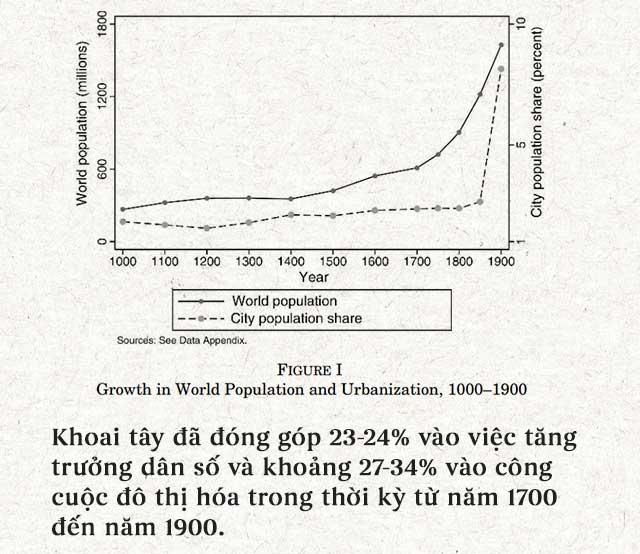 Khoai tây đã đóng góp 23-24% vào việc tăng trưởng dân số và khoảng 27-34%