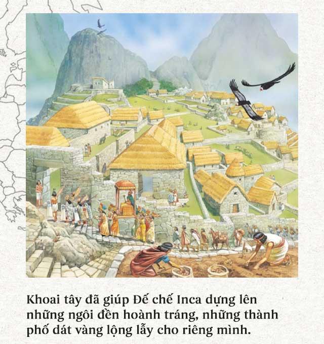 Khoai tây giúp người Inca xây dựng được một đế chế hùng mạnh ở Nam Mỹ.