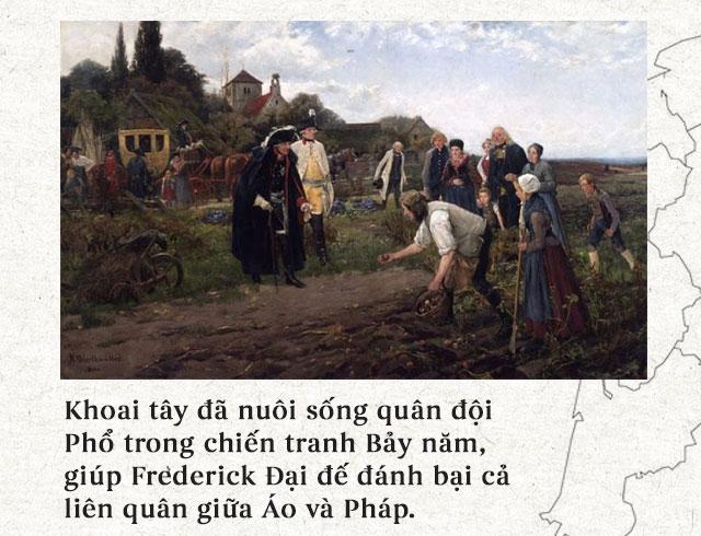 Khoai tây đã nuôi sống quân đội Phổ trong chiến tranh