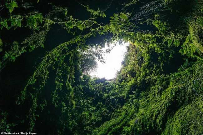Explore an ancient lava tube at the center of the Earth